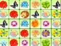 Colorful Flowers Link Icon